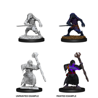 D&D Nolzurs Marvelous Unpainted Miniatures: Wave 10: Kenku Adventures