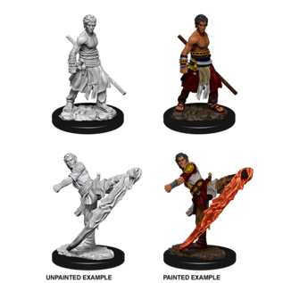 D&D Nolzurs Marvelous Unpainted Miniatures: Wave 10: Male Half-Elf Monk