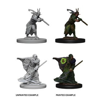D&D Nolzurs Marvelous Unpainted Miniatures: Wave 4: Elf Male Druid