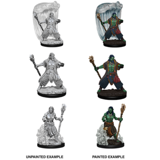 D&D Nolzurs Marvelous Unpainted Miniatures: Wave 5: Water Genasi Male Druid
