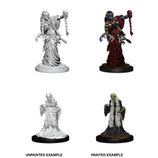 D&D Nolzurs Marvelous Unpainted Miniatures: Wave 6: Green Hag & Night Hag