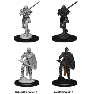 D&D Nolzurs Marvelous Unpainted Miniatures: Wave 9: Human Female Fighter
