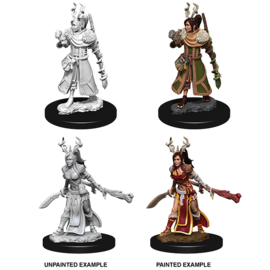 D&D Nolzurs Marvelous Unpainted Miniatures: Wave 9: Human Female Druid