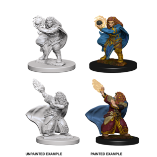 D&D Nolzurs Marvelous Unpainted Miniatures: Wave 4: Dwarf Female Wizard