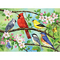 Cobble Hill Puzzle: 350 Bloomin' Birds