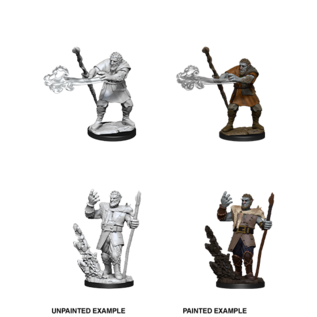 D&D Nolzurs Marvelous Unpainted Miniatures: Wave 11: Male Firbolg Druid