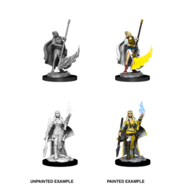 Pathfinder Deep Cuts Unpainted Miniatures: Wave 11: Female Human Oracle