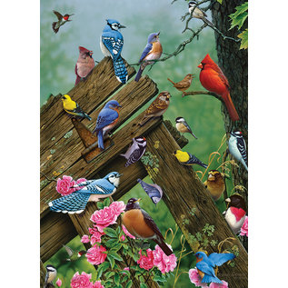 Puzzle: 1000 Birds of the Forest