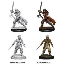 Nolzur's Marvelous Miniatures: Wave 8: Vampire Hunters