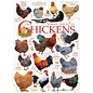 Cobble Hill Puzzle: 1000 Chicken Quotes