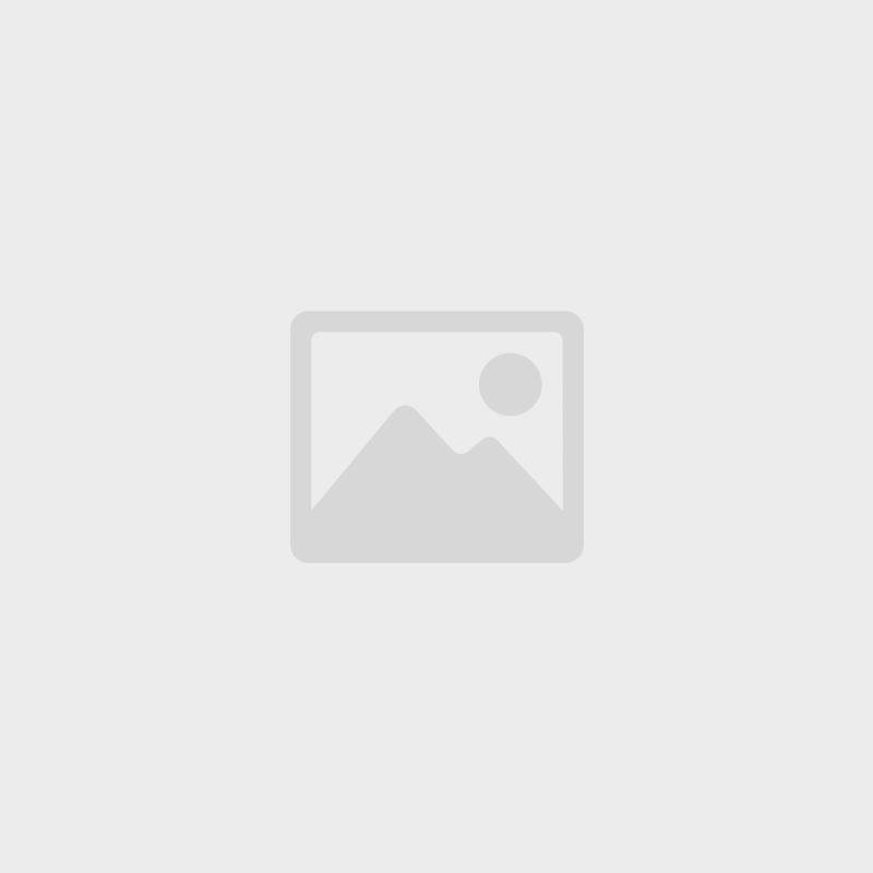 Elderwood Spellbook: Foil - Silver/Rainbow Elvish
