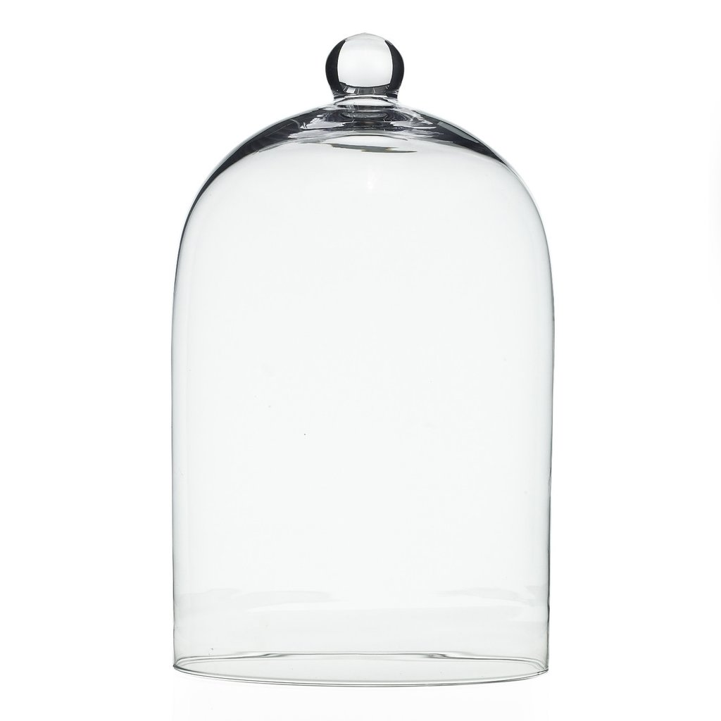 Glass Cloche, Large