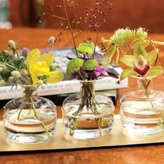 LPM Unique Glass Vase, Assorted Styles