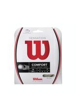 Wilson Wilson Sensation