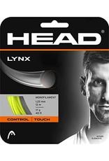 Head Head Lynx string