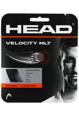 Head Head Velocity MLT string
