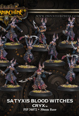 Warmachine Cryx - Satyxis Blood Witches