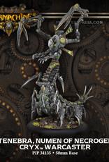 Warmachine Cryx - Mortenebra, Numen of Necrogensis