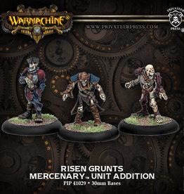 Warmachine Mercenaries - Risen Blister (3)