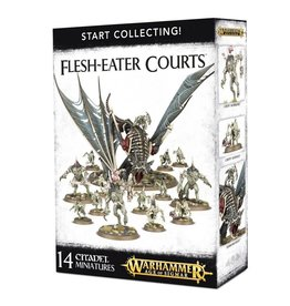 Age of Sigmar AoS - Start Collecting Flesh-Eater Courts