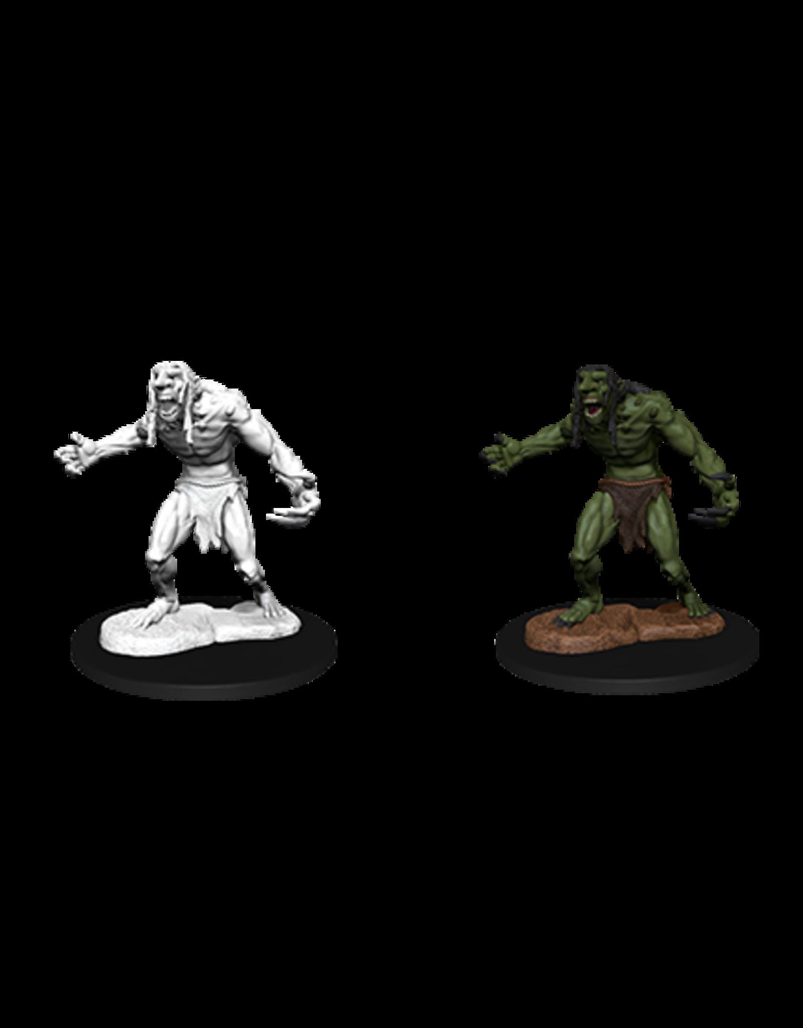 Nolzur's Marvelous Miniatures D&D D&D NMU - Raging Troll (W12)