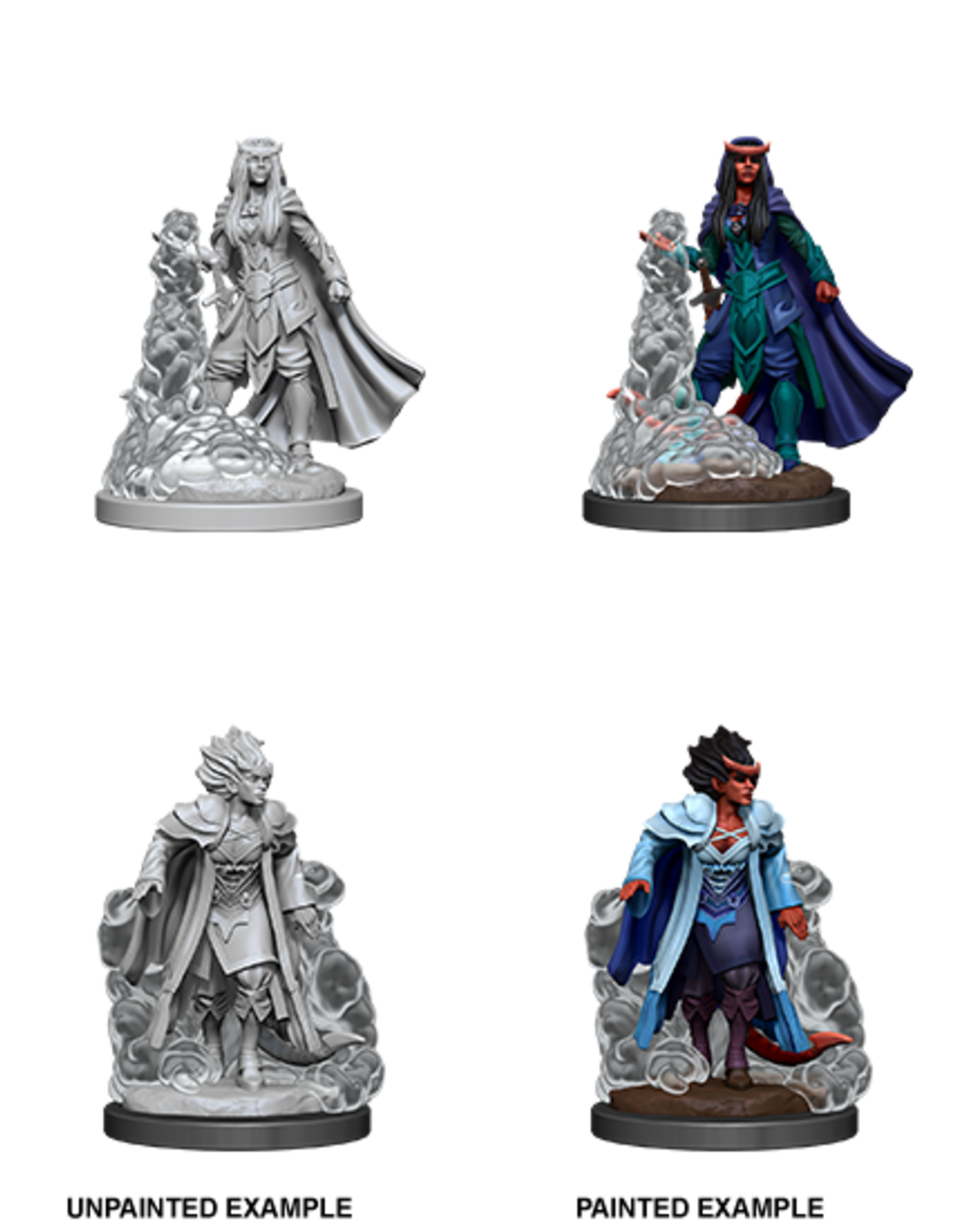 Nolzur's Marvelous Miniatures D&D D&D NMU - Female Tiefling Sorcerer (W12)