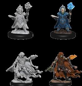 Dungeons & Dragons D&D NMU - Evil Wizards