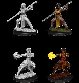 Dungeons & Dragons D&D NMU - Female Half-Elf Monk