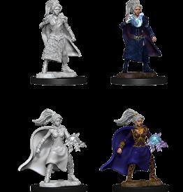 Dungeons & Dragons D&D NMU - Female Human Sorcerer