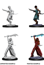 Dungeons & Dragons D&D NMU - Female Human Rogue