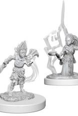 Dungeons & Dragons D&D NMU - Gnome Female Druid