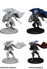 Dungeons & Dragons D&D NMU - Female Elf Paladin 2