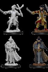 Dungeons & Dragons D&D NMU - Male Elf Paladin