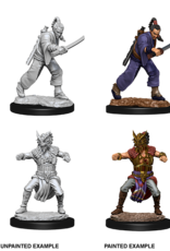 Nolzur's Marvelous Miniatures D&D D&D NMU - Male Human Monk
