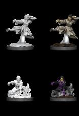 Dungeons & Dragons D&D NMU - Human Monk