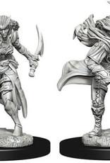 Nolzur's Marvelous Miniatures D&D D&D NMU - Female Tiefling Rogue