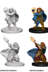 Dungeons & Dragons D&D NMU - Dwarf Wizard Female