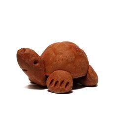 Tortoise Natural Mini