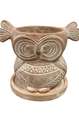 Wakeful Owl Terracotta Planter