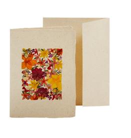 TTV USA Flowerbed Card