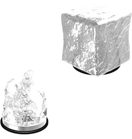 Wiz Kids D&D NMU: Gelatinous Cube W6