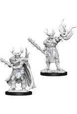 Wiz Kids D&D NMU: W10 Male Half-Orc Druid