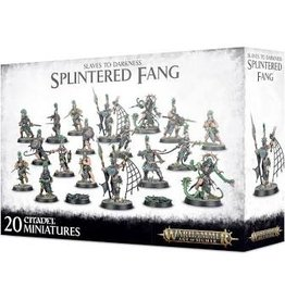 Age of Sigmar Slaves to Darkness: The Splintered
