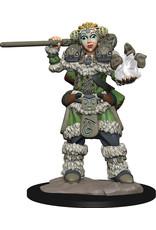 Wiz Kids Wardlings: Girl Druid & Stone Creature