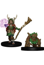 Wiz Kids Wardlings: Boy Druid & Tree Creature