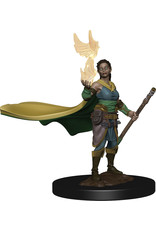 Wiz Kids D&D NMU: Elf Female Druid W4