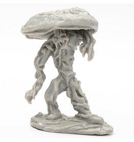 Reaper Bones BK: Fungal Guardian