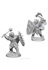 Wiz Kids D&D NMU: Dragonborn Male Paladin W4