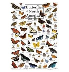 MasterPieces Poster Art - Butterflies of North America 1000pc Puzzle