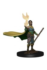 Wiz Kids D&D ICR Premium Figures: W1 Elf Female Druid (Discontinued)